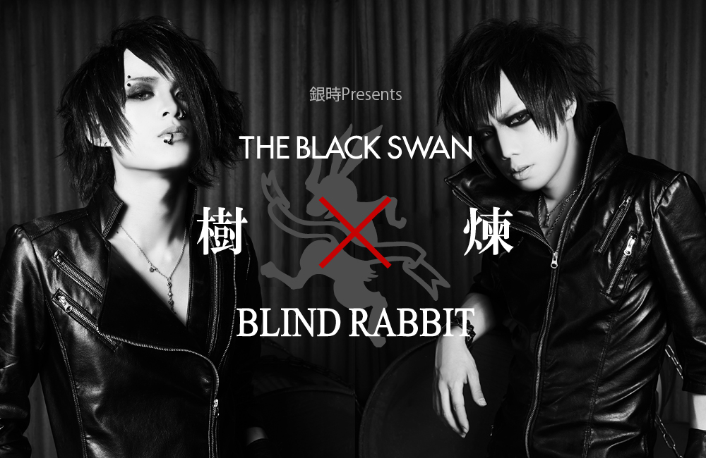 樹&煉(THE BLACK SWAN)×BLIND RABBIT